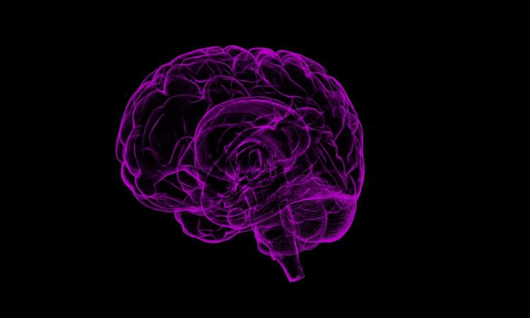 Soldiers can silently communicate using brain signals in future
