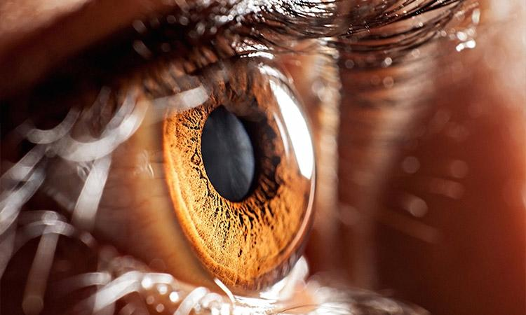 covid 19, Covid 19 symtoms, Covid 19 prevention, Covid 19 India, Lockdown, Covid-19 can infect cells in eye: Study,  Covid 19 effect on body