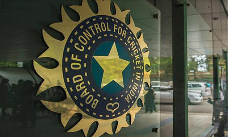 BCCI, Indian Cricket Team, Player of the month, IPL, IPL 2021, IPL cancelled, BCCI to meet on Saturday, may decide on IPL 2021's fate