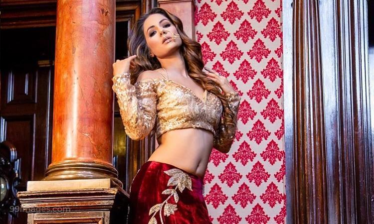 TV actress, Bollywood actress, Actress, Hina Khan, Hina Khan pictures, Hina Khan hot picture,Top 10 times Hina Khan took the Internet by storm